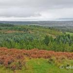 photo-randonnee-glendalough-irlande-3