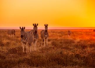 10 pays à visiter en 2015