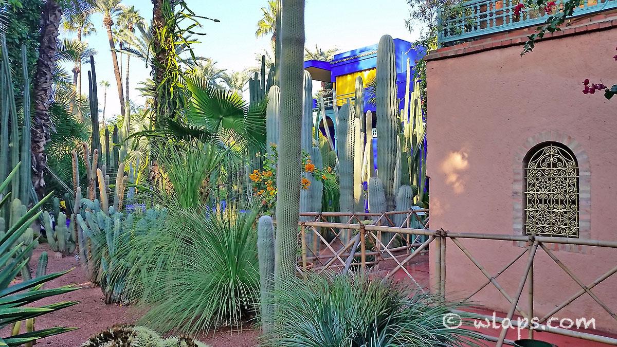 maison-jardin-majorelle-carnet-voyage-maroc-marrakech
