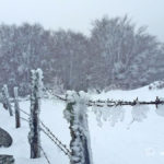 9-photo-village-aubrac-neige-brouillard