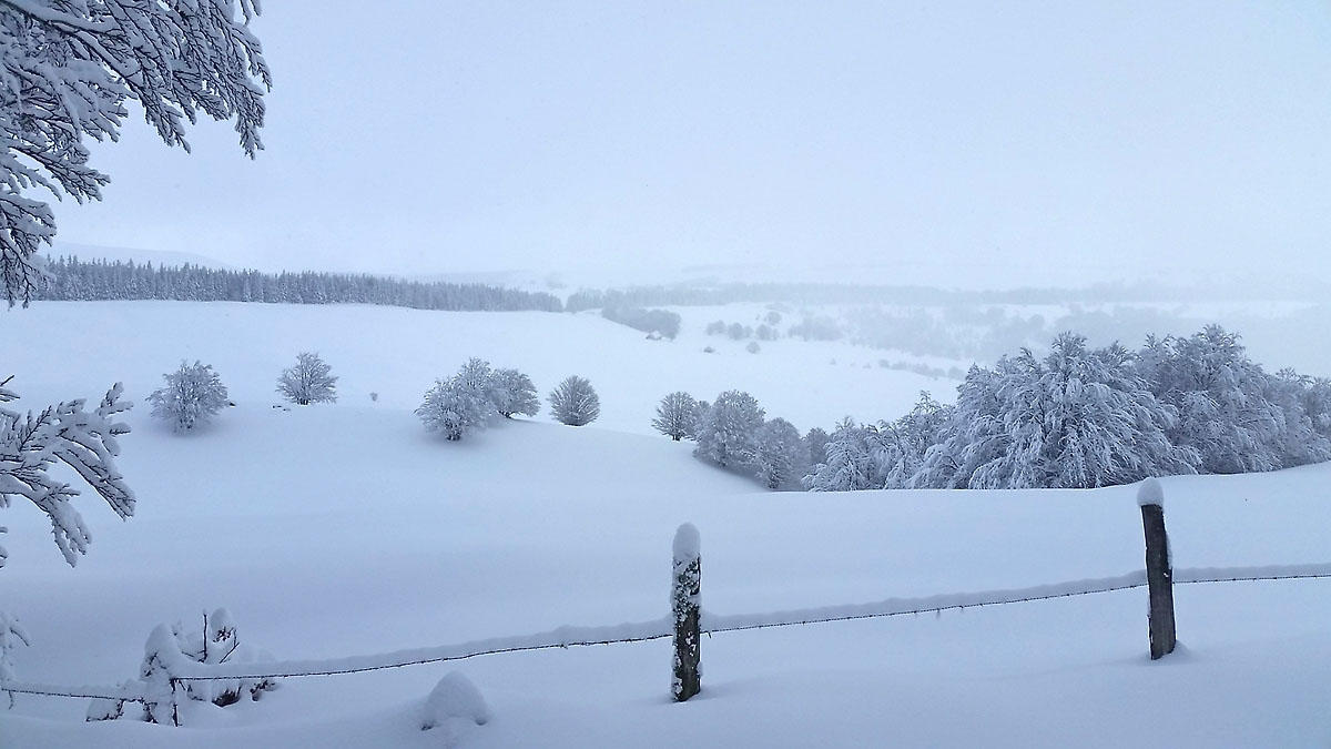 balade-photos-plateau-aubrac-neige-10