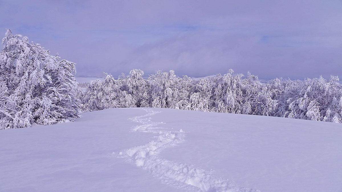 balade-photos-plateau-aubrac-neige-2