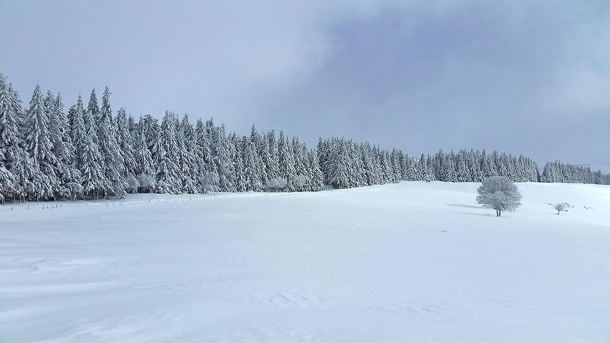 balade-photos-plateau-aubrac-neige-5