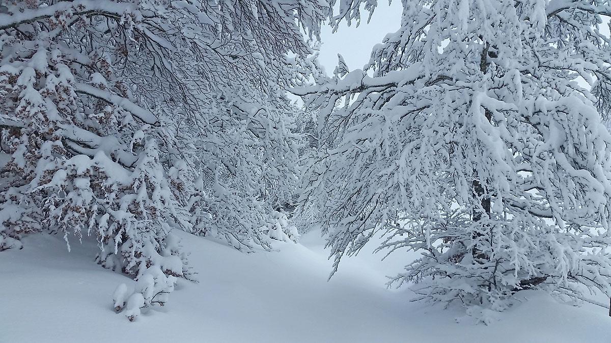 balade-photos-plateau-aubrac-neige-9