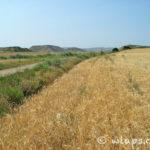 photo-desert-bardenas-reales-espagne-vtt-8
