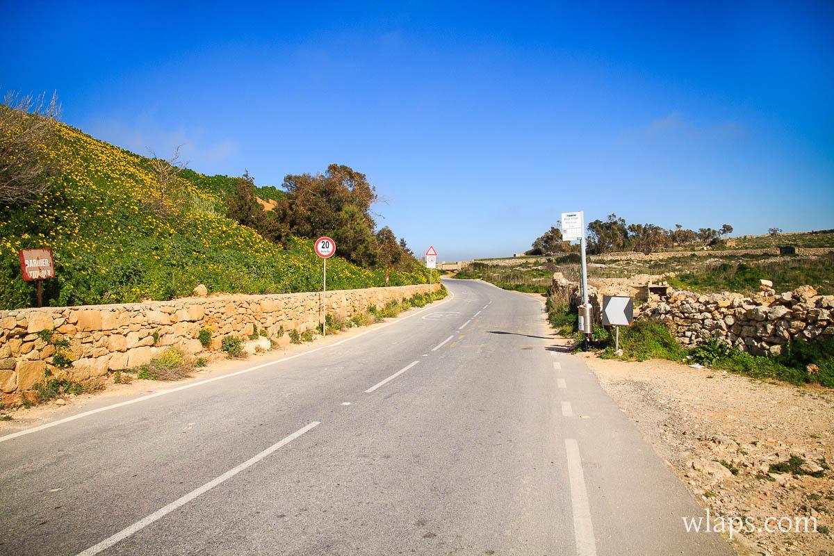 mars-malte-gozo-fleurs-voyage-1
