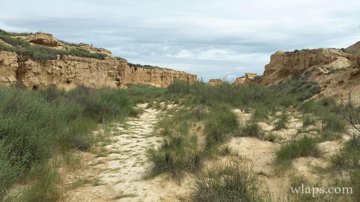 photo-desert-bardenas-reales-999