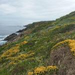 sentier-littoral-hondarribia-pasaia-00