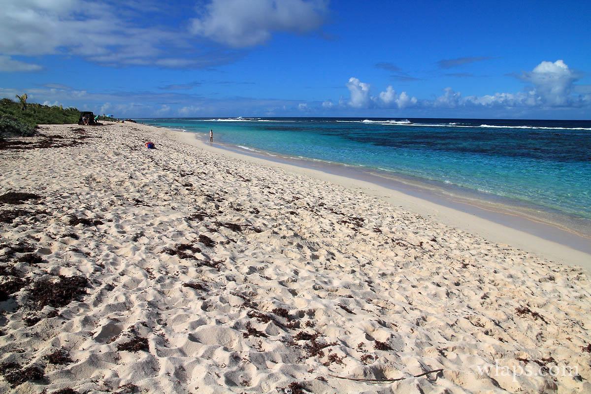 1-belle-plage-des-salines-grande-terre-guadeloupe