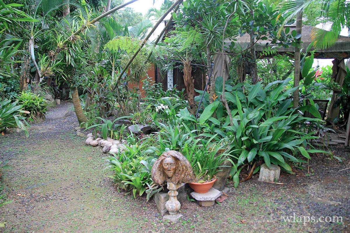 1-parc-aux-orchidees-pointe-noire-guadeloupe