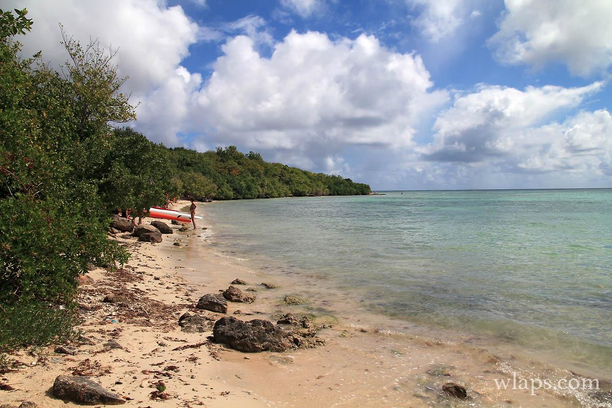 Les plus belles plages de Guadeloupe : plage de l'Anse du Mancenillier