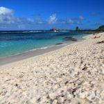 2-belle-plage-des-salines-grande-terre-guadeloupe