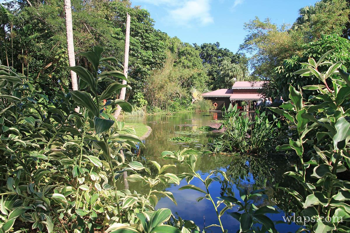 Jardin botanique de deshaies cela vaut il vraiment le for Le jardin botanique camping