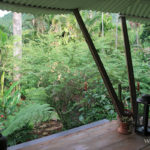 2-massage-parc-aux-orchidees-pointe-noire-guadeloupe