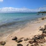 2-plage-anse-du-mancenillier-grande-terre-guadeloupe