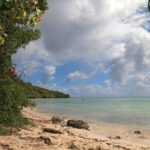 3-plage-anse-du-mancenillier-grande-terre-guadeloupe