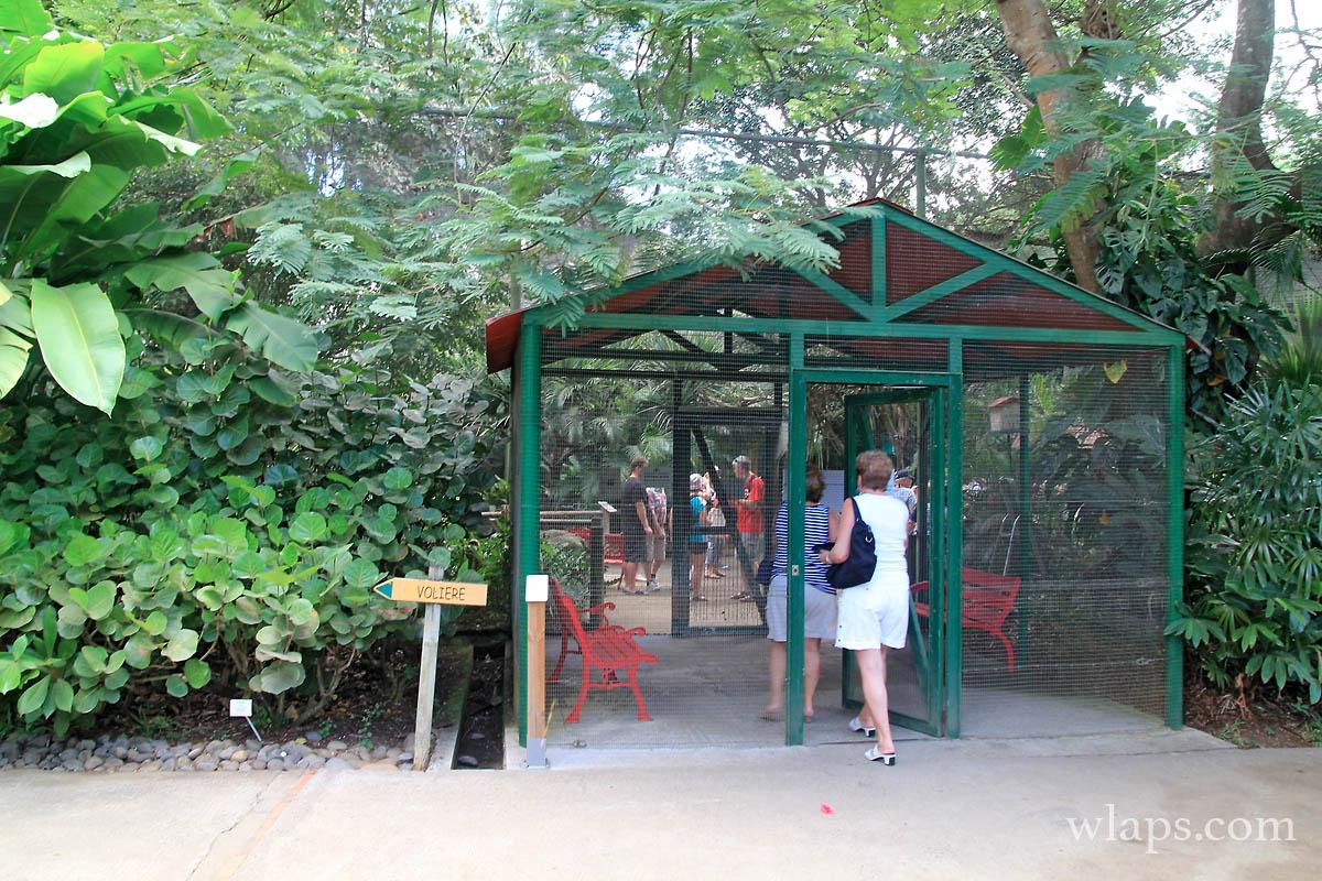 4-le-jardin-botanique-deshaies-guadeloupe