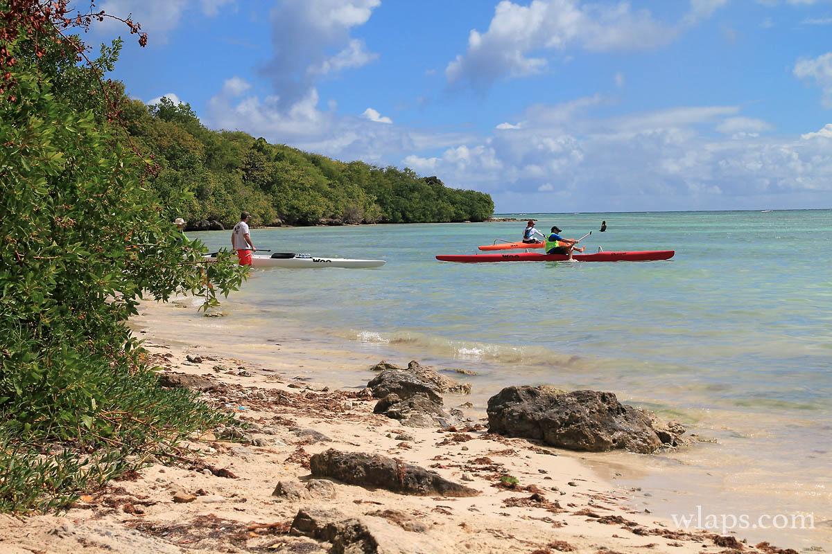 4-plage-anse-du-mancenillier-grande-terre-guadeloupe
