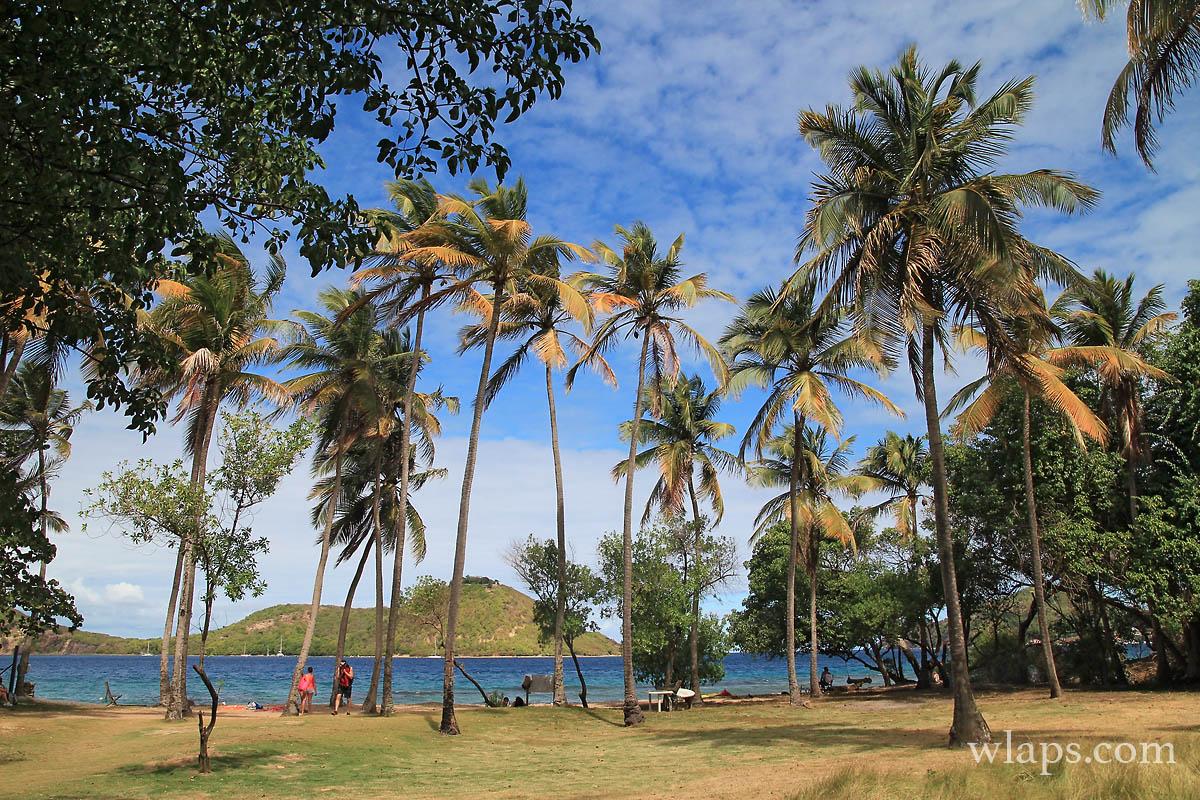 6-plage-du-pain-de-sucre-terre-de-haut-les-saintes-guadeloupe