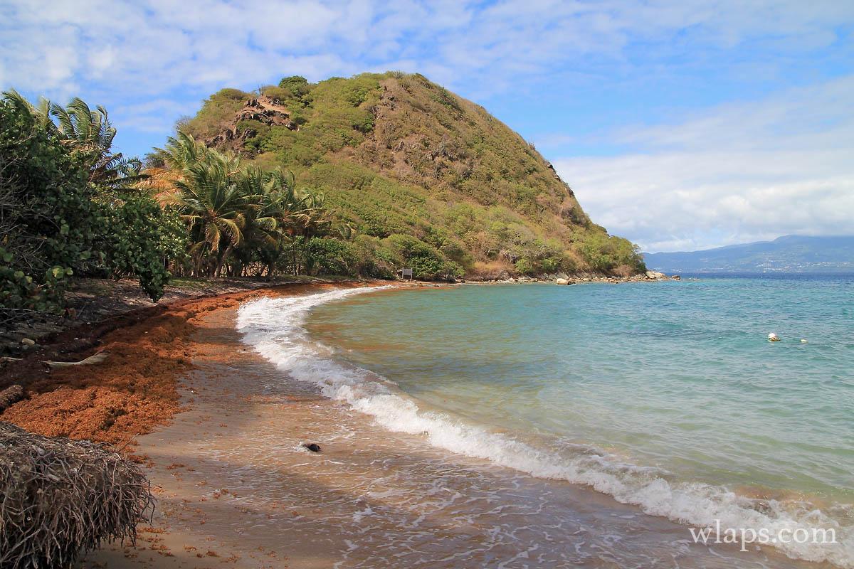 7-mer-plage-du-pain-de-sucre-terre-de-haut-les-saintes-guadeloupe