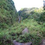 cascade-chute-du-galion-basse-terre-guadeloupe-4
