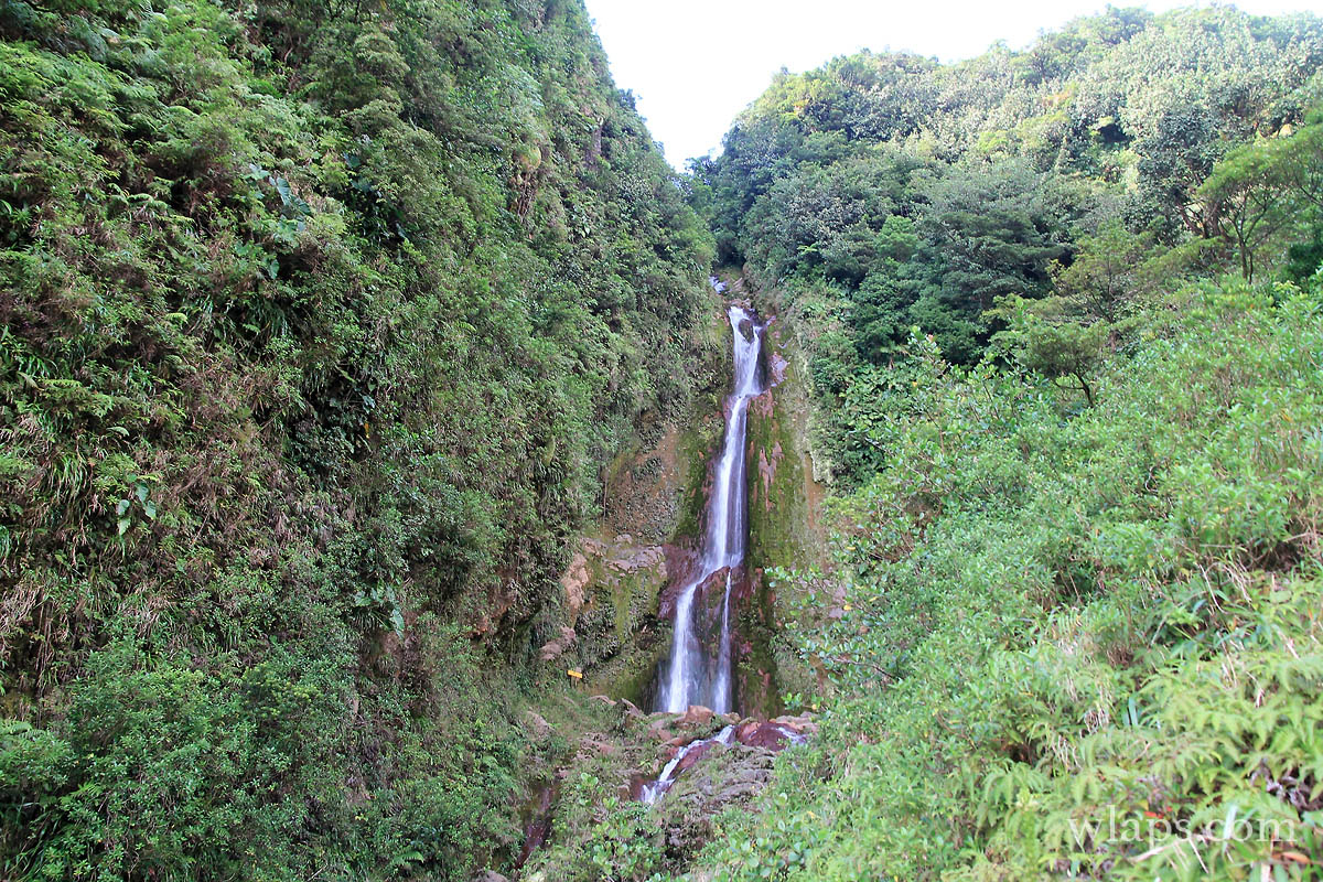 cascade-chute-du-galion-basse-terre-guadeloupe-5
