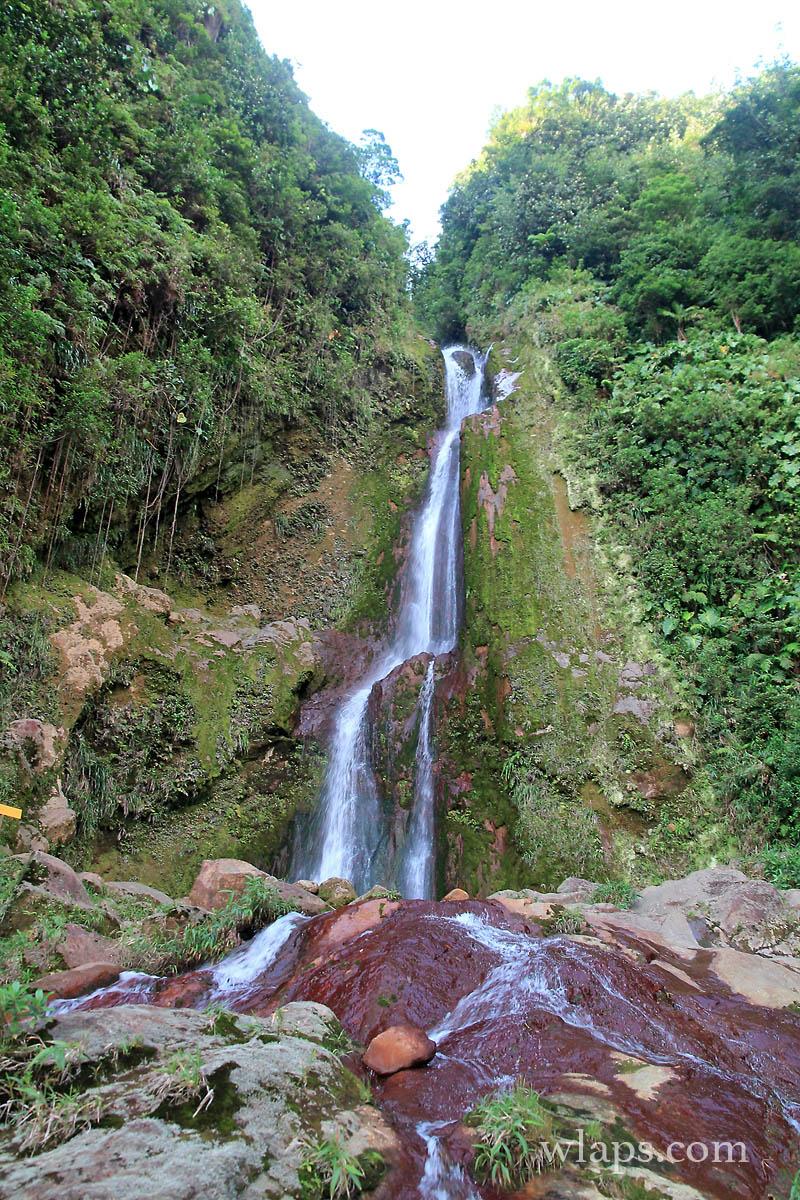 cascade-chute-du-galion-basse-terre-guadeloupe-9