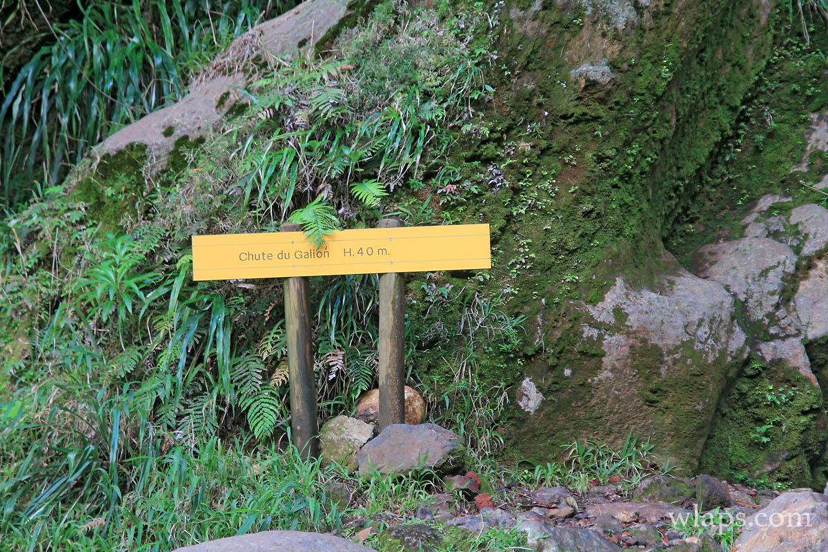cascade-chute-du-galion-basse-terre-guadeloupe