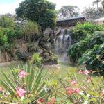 jardin-botanique-deshaies-basse-terre-guadeloupe