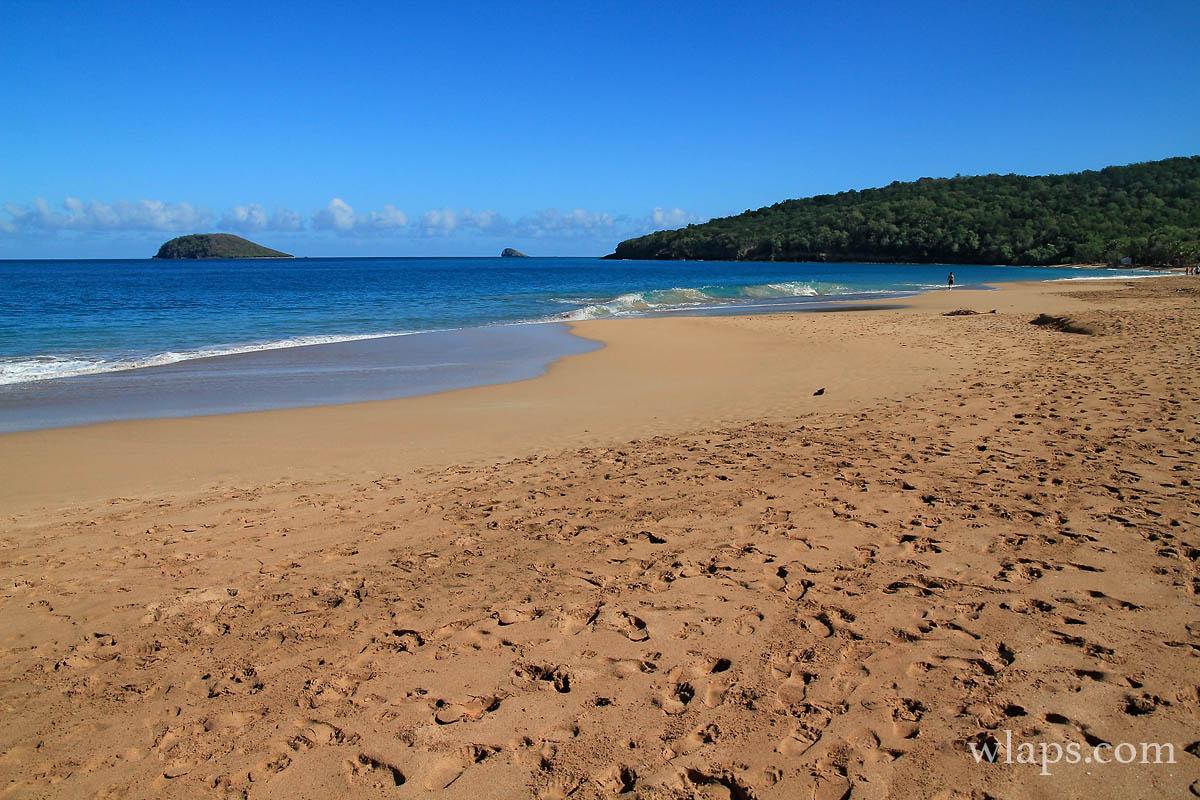 2-plage-anse-rifflet-basse-terre-guadeloupe