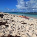 3-belle-plage-des-salines-grande-terre-guadeloupe