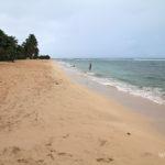 belle-plage-de-la-chapelle-guadeloupe