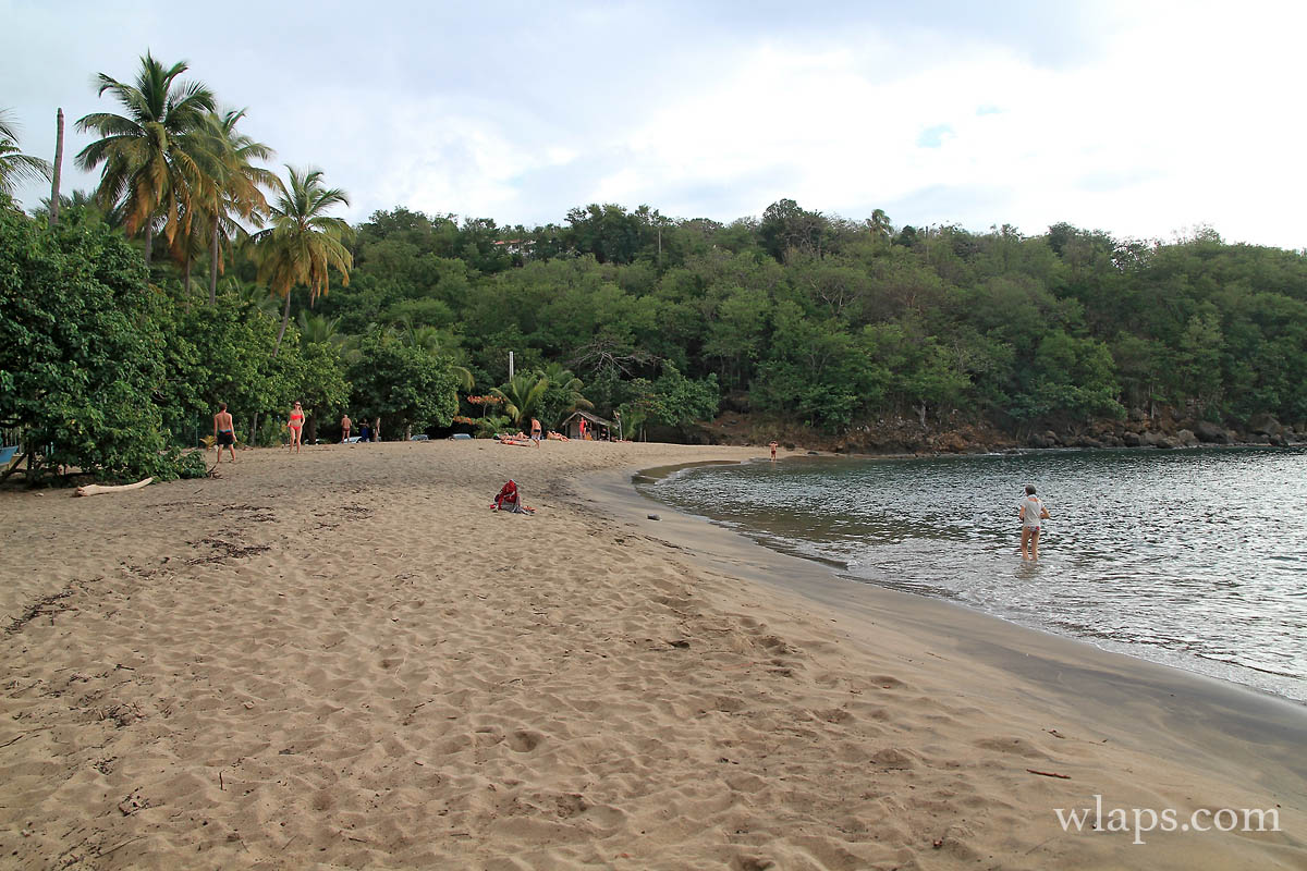 gris-plage-petite-anse-guadeloupe