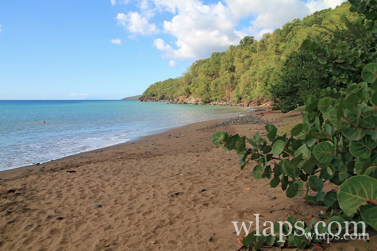 plage-anse-caraibes-guadeloupe