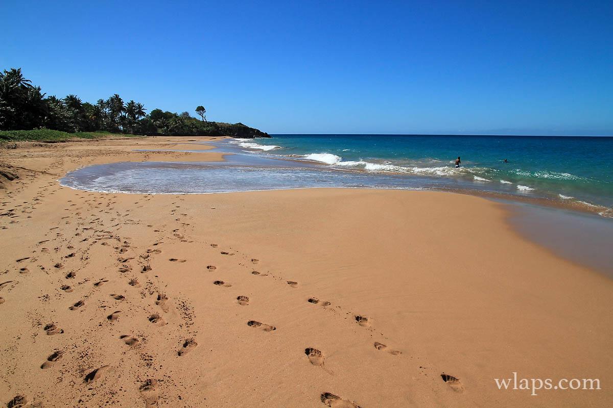 4-plage-anse-rifflet-basse-terre-guadeloupe