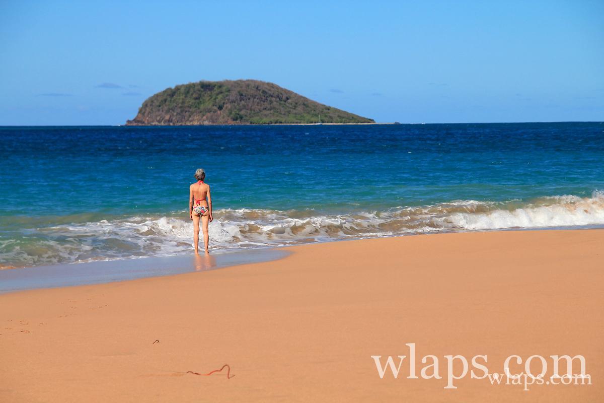 Les plus belles plages de Guadeloupe : plage de l'Anse Rifflet
