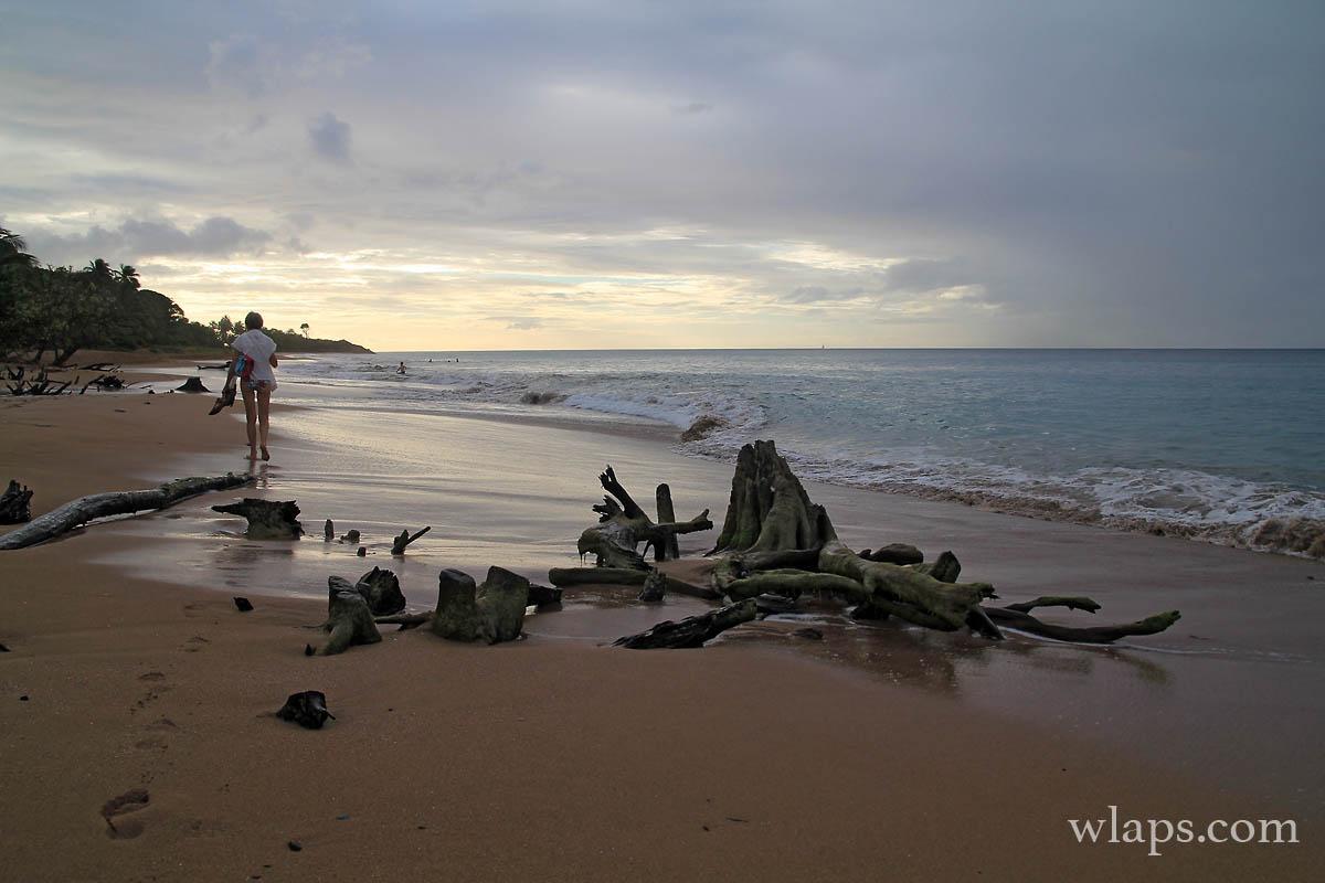 le-soleil-baisse-plage-de-la-perle-deshaies