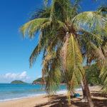 vue-plage-de-la-perle-guadeloupe