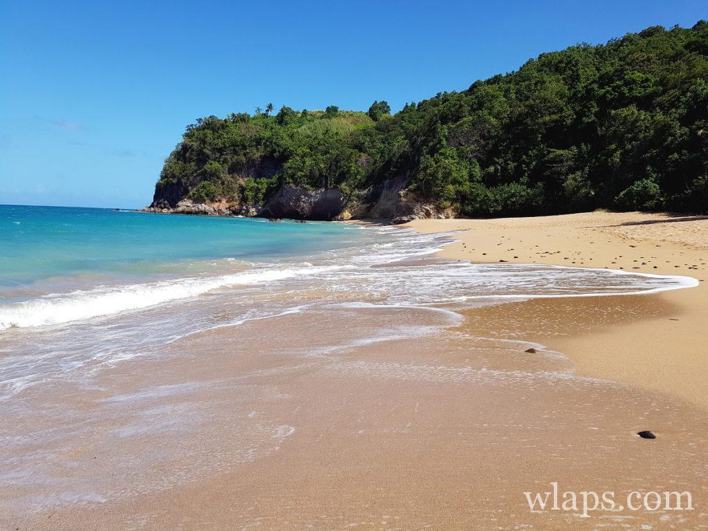 Très belle plage naturiste de l'Anse Tillet en Guadeloupe