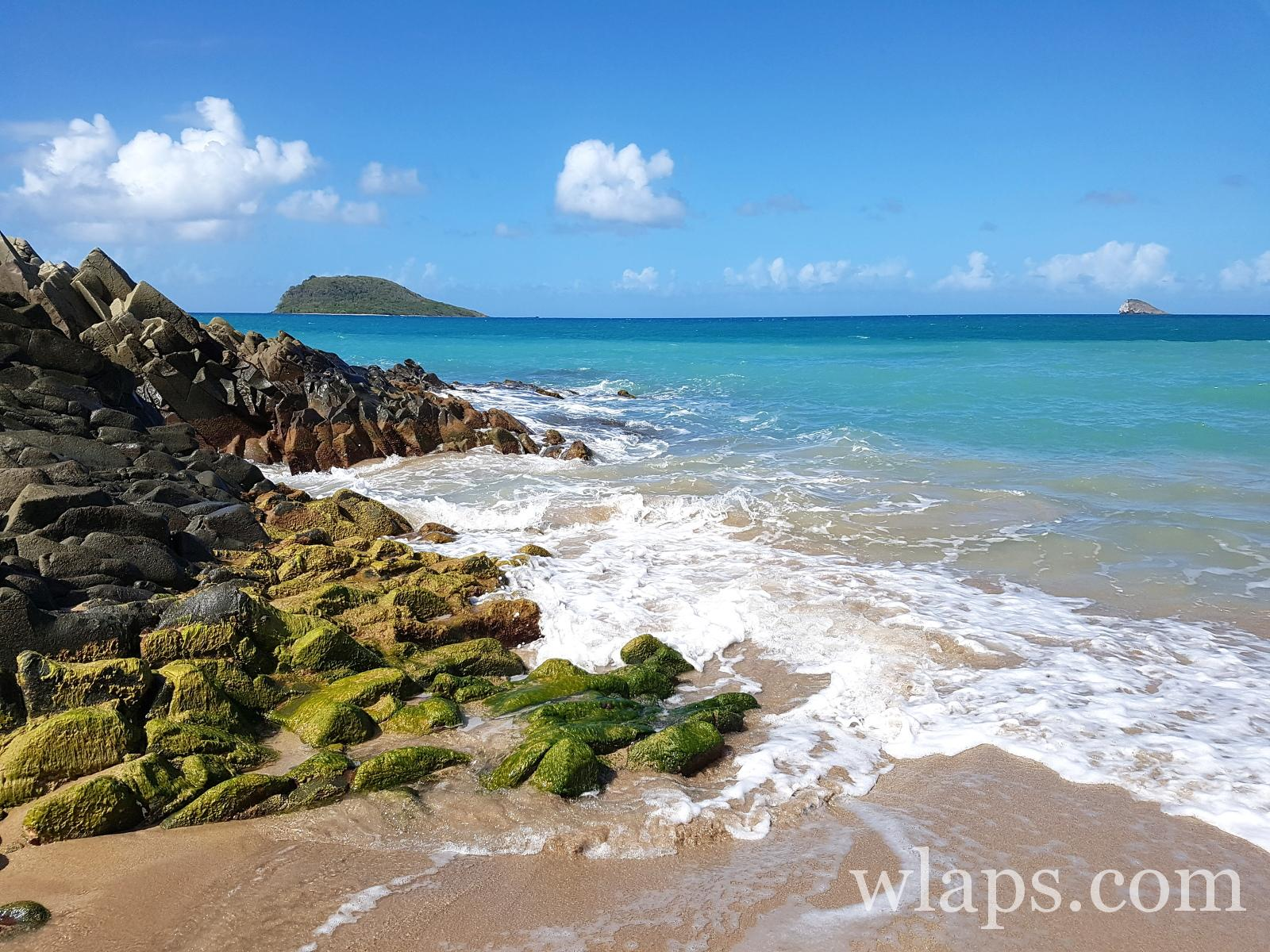 Plage naturiste de Anse Tillet en Guadeloupe