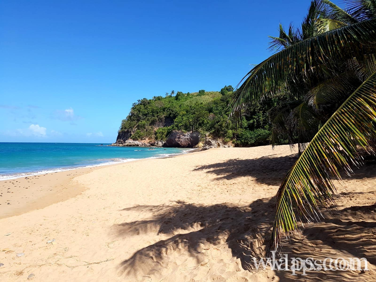 Vue sur la plage naturiste de Anse Tillet