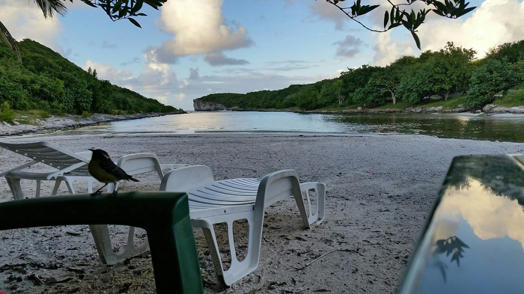 table sur le sable au restaurant en Guadeloupe