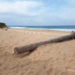 7-photo-praia-do-meco-portugal