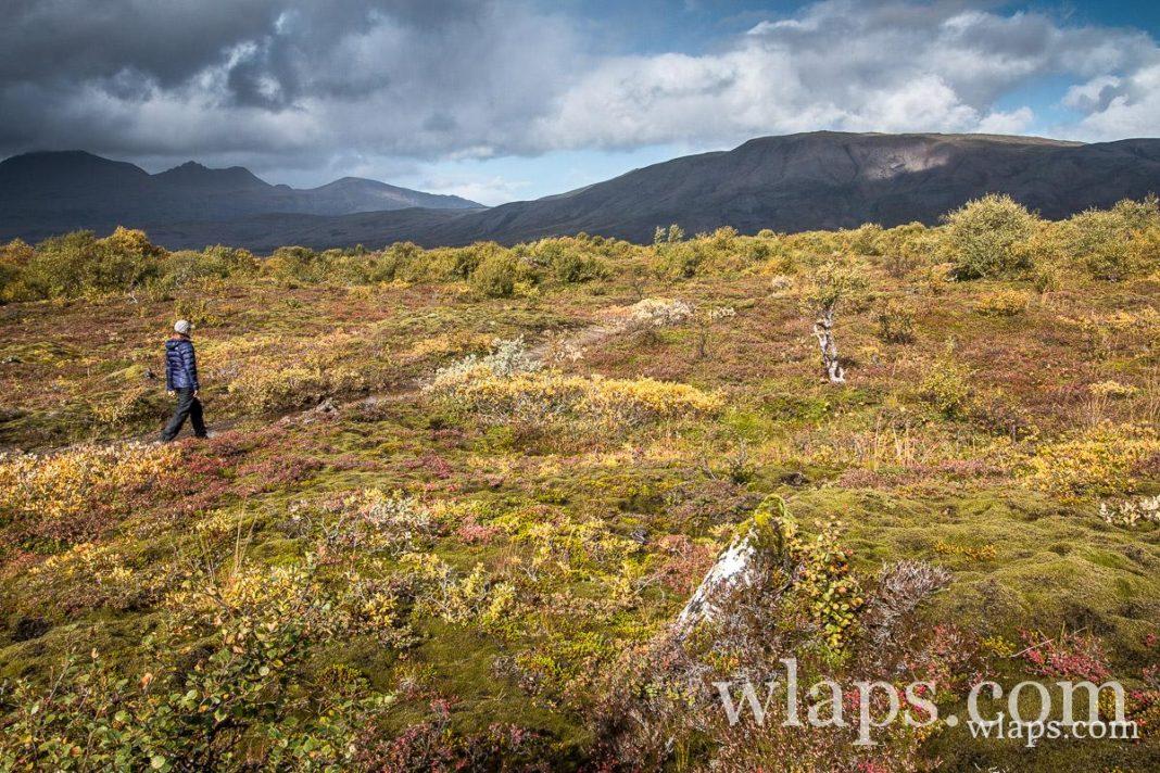 Balade dans le parc national de Thingvellir