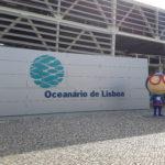 12-photo-oceanarium-de-lisbonne