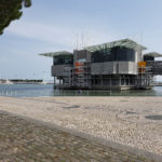 13-photo-oceanarium-de-lisbonne