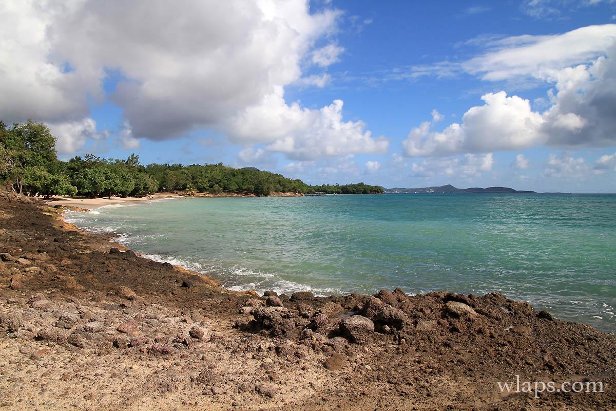 Sur le chemin de randonnée en Martinique