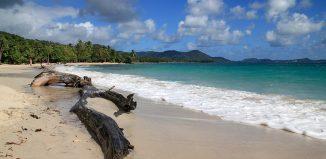 Les 10 meilleures randonnées à faire en Martinique
