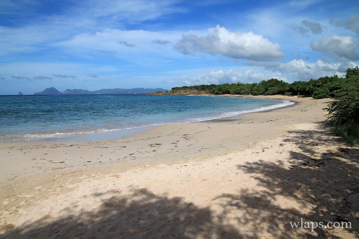 vue-plage-petite-anse-salines