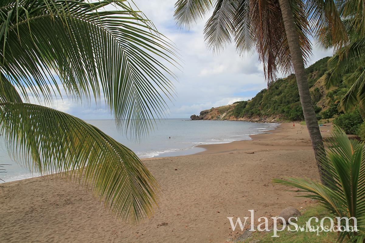 photo-petite-anse-martinique